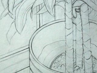 9-Basic-Drawing