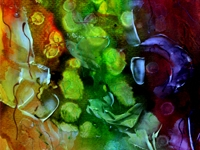 gen-gallery-image-410