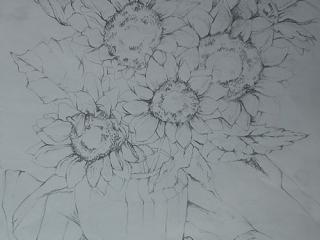 5-Drawing-copy