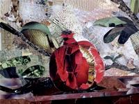 gen-gallery-image-724